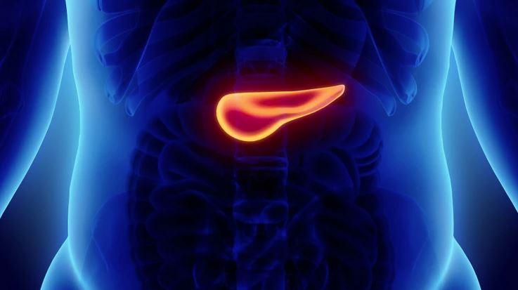 Cáncer de páncreas. Así se busca la cura