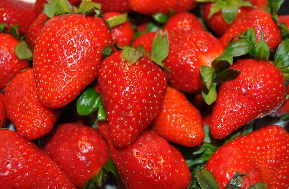 Un estudio en ratones muestra cómo actúan las fresas contra el cáncer de mama